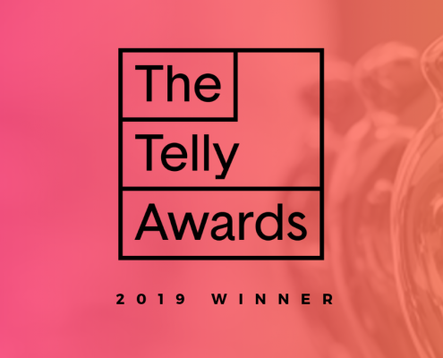catmedia telly award winner